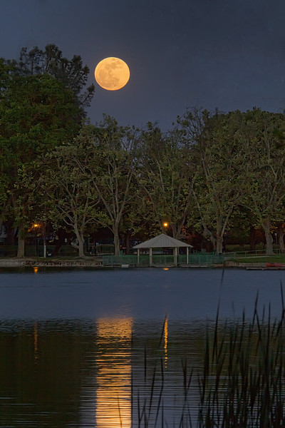 Taken 5/5/2012 at Lodi Lake.  Supermoon-closest to Earth this year, only 221,802 miles away.