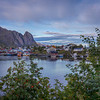 Reine From Behind The Trees