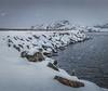 Embracing the Storm - Svolvær, Lofoten, Norway