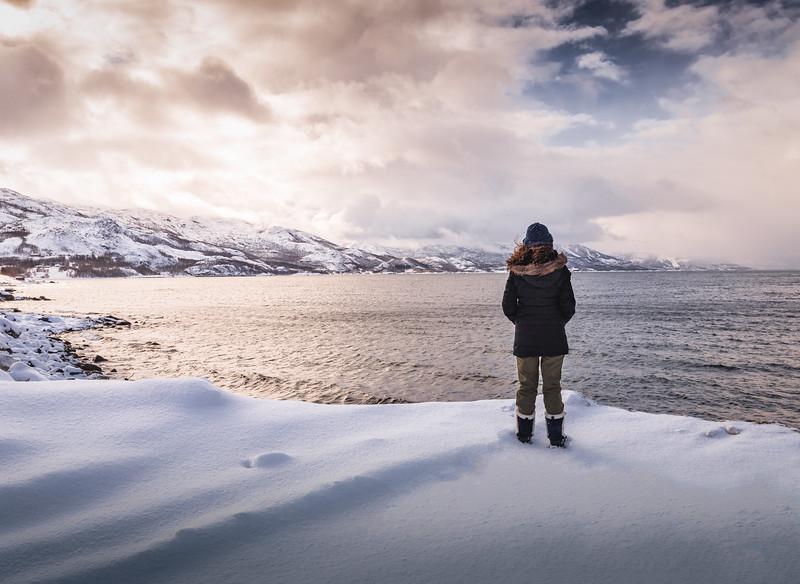 Norwegian Sea - Bjerkvik, Nordland