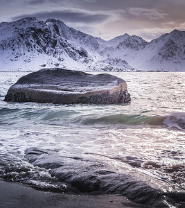 Couple of birds - Haukland Beach, Lofoten