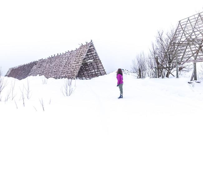 Whiteout! - Lofoten