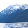 Eastern shore of Princess Royal Reach, Jervis Inlet.