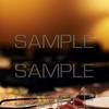 Tibet Restaurant Lange Niezel 010 (sample)