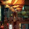 Tibet Restaurant Lange Niezel 016 (sample)