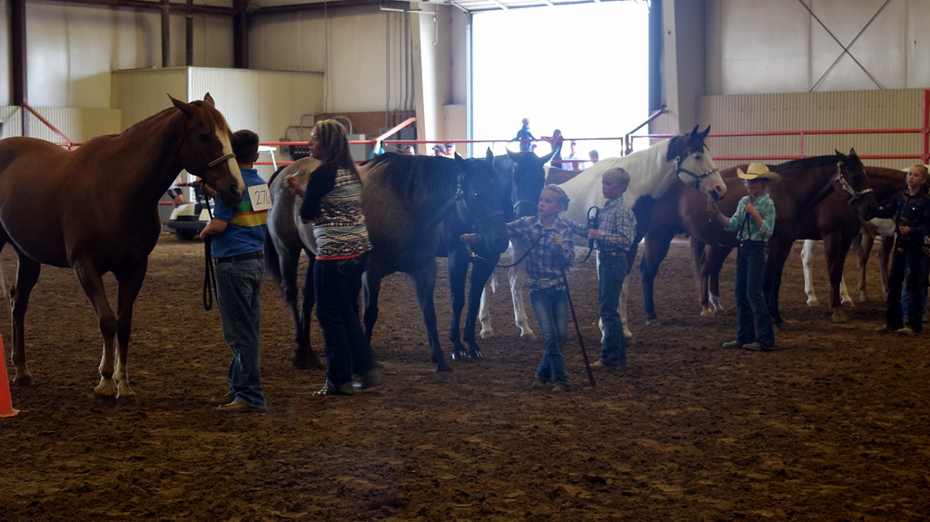 . Junior showman hold onto their horses as the judge looks them over during the Round Robin Showmanship Contest Friday, Aug. 11, 2017, at the Logan County Fair.