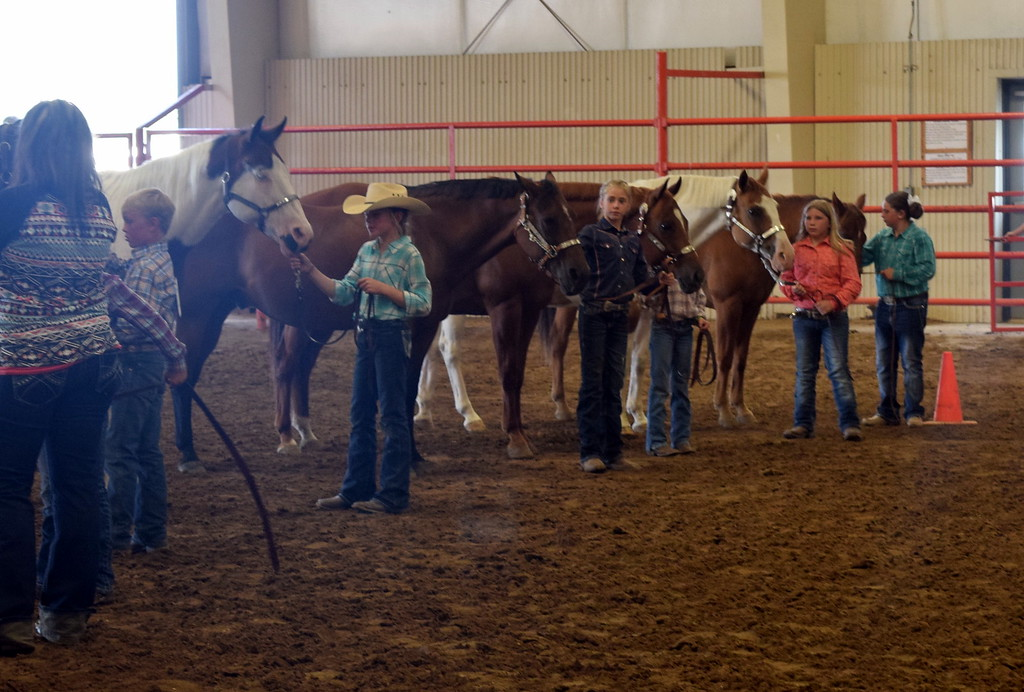 . Junior showmanship competitors hold onto their horses as the judge looks them over during the Round Robin Showmanship Contest Friday, Aug. 11, 2017, at the Logan County Fair.
