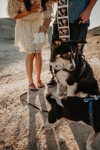Logan and Celeste Pregnancy WEBS-14