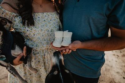 Logan and Celeste Pregnancy WEBS-3