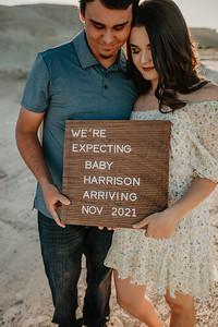 Logan and Celeste Pregnancy WEBS-24