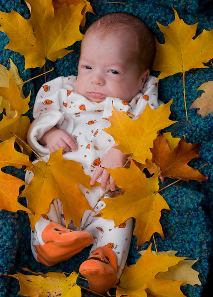 Oct. 21. Logan's 2009 Autumn portraits.