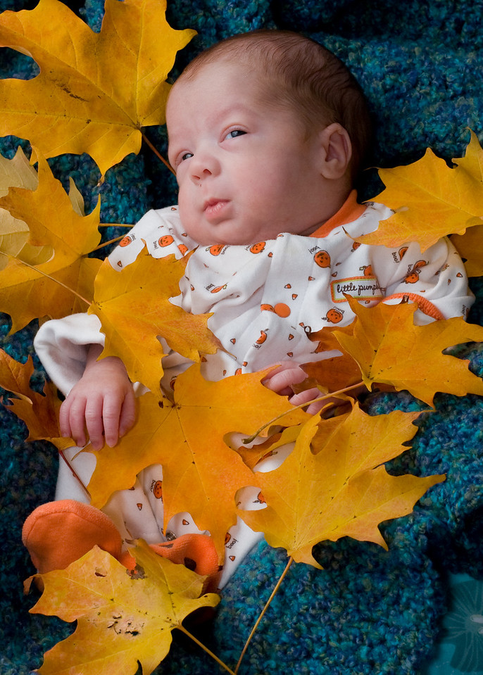 Oct. 21. Logan's 2009 Autumn portraits.