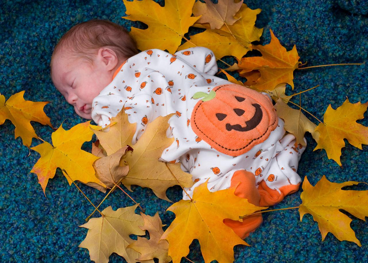 Pumpkin Butt<br /> <br /> Oct. 21. Logan's 2009 Autumn portraits.