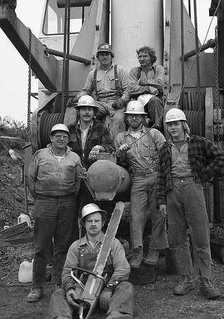 Logging 1981