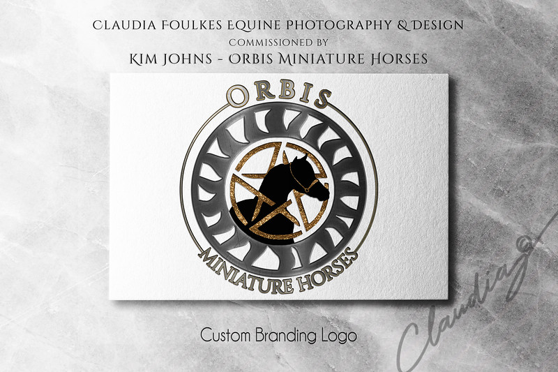 Logo Mockup Collection by Asylab