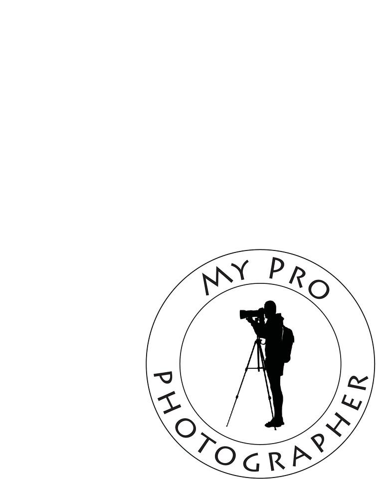 MPP-Logo2