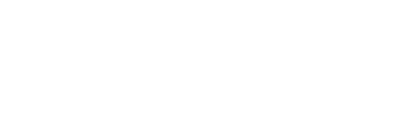 logo 2017 bianco