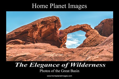 Promotional Postcard for Elegance of Wilderness