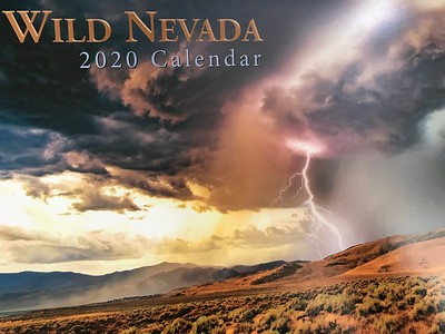 Honored that my Pyramid Lightning shot is on the cover of the 2020 Wild Nevada calendar!