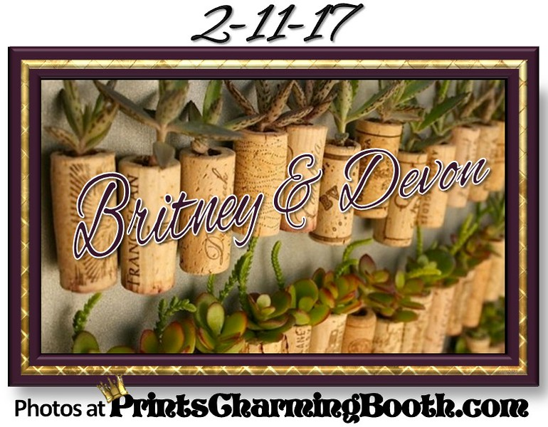 2-11-17 Britney and Devon Wedding logo