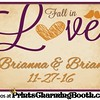 11-27-16 Brianna & Brian Wedding logo