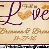11-27-16 Brianna & Brian Wedding logo
