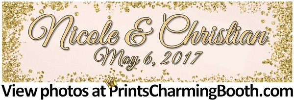 5-6-17 Nicole & Christian Wedding logo