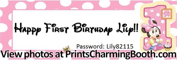 8-23-15 Happy 1st Birthday Lily logo
