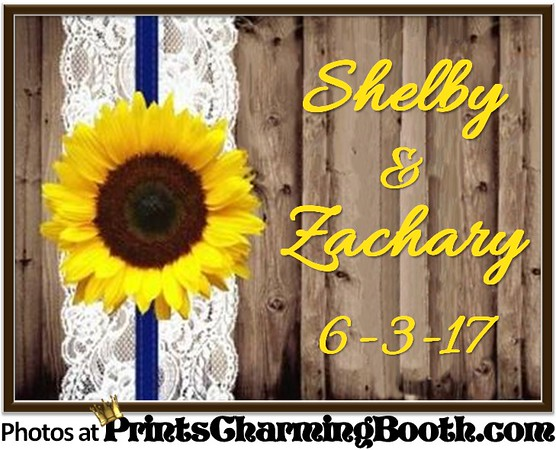 6-3-17 Shelby & Zachary Wedding logo