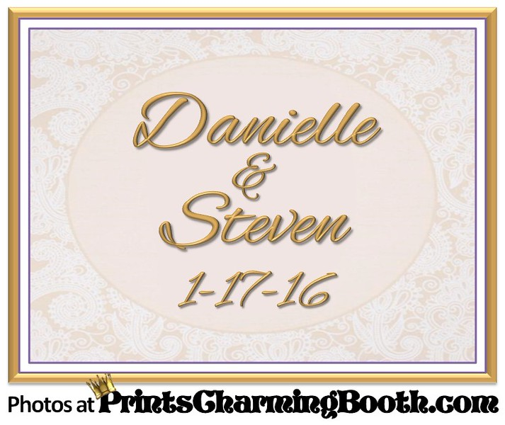 1-17-16 Danielle and Steven Wedding logo
