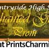 4-1-16 Countryside High School Prom logo
