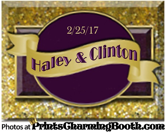2-25-17 Haley & Clinton Wedding logo - revised