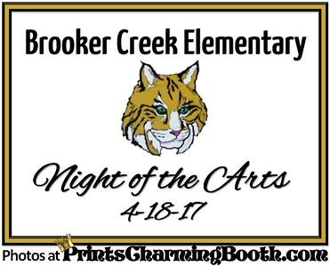 4-18-17 Brooker Creek Elementary - Night of the Arts
