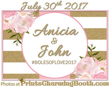 7-30-17 Anicia and John Wedding logo