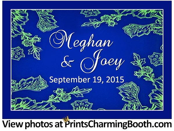 9-19-15 Meghan and Joey Wedding logo