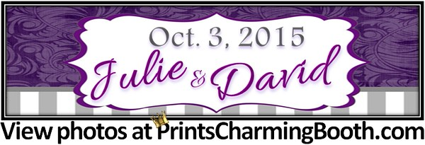 10-3-15 Julie and David Wedding logo