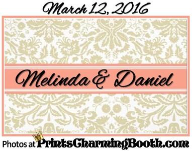 3-12-16 Melinda and Daniel Wedding logo