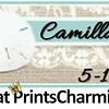 5-1-16 Camilla and Roger Wedding logo