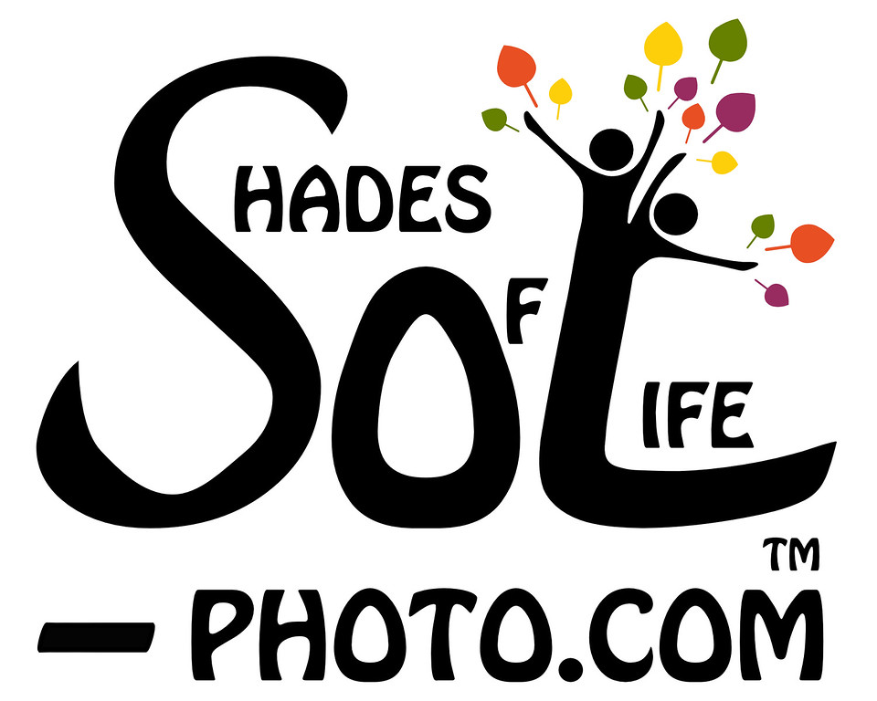 ShadesOfLife-Logo-Square-01-TM_141211-Color