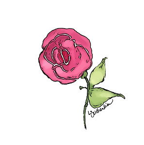 Watercolor Mini Knockout Rose Logo v.2020