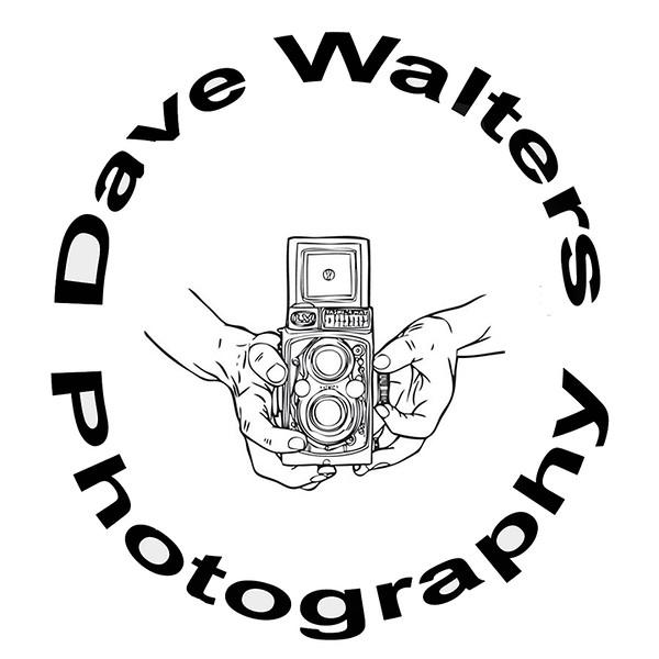DWP Logo Y-TLR (3x3)