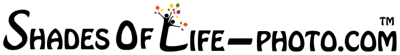 ShadesOfLife-Logo-Banner-03-TM_141211-Color