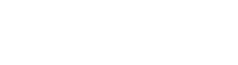 NDS Logo - Flow Management - White