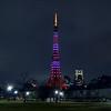 Tokyo (Minato) - Tokyo Tower for Valentine's day