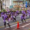 Genki Matsuri Super Yosakoi Festival