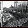 Tokyo (Oimachi) - Train