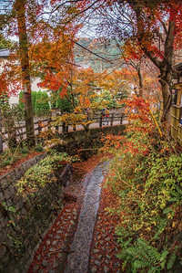Mount Takao - Autumn