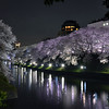 Tokyo (Chidorigafuchi) - Kitanomaru Park