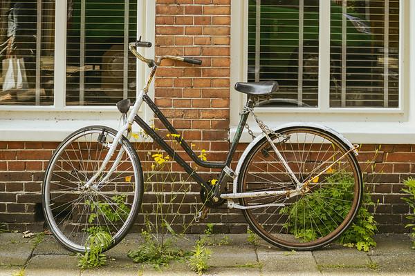 Bike PB0098.2021