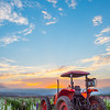lompoc tractor-0412